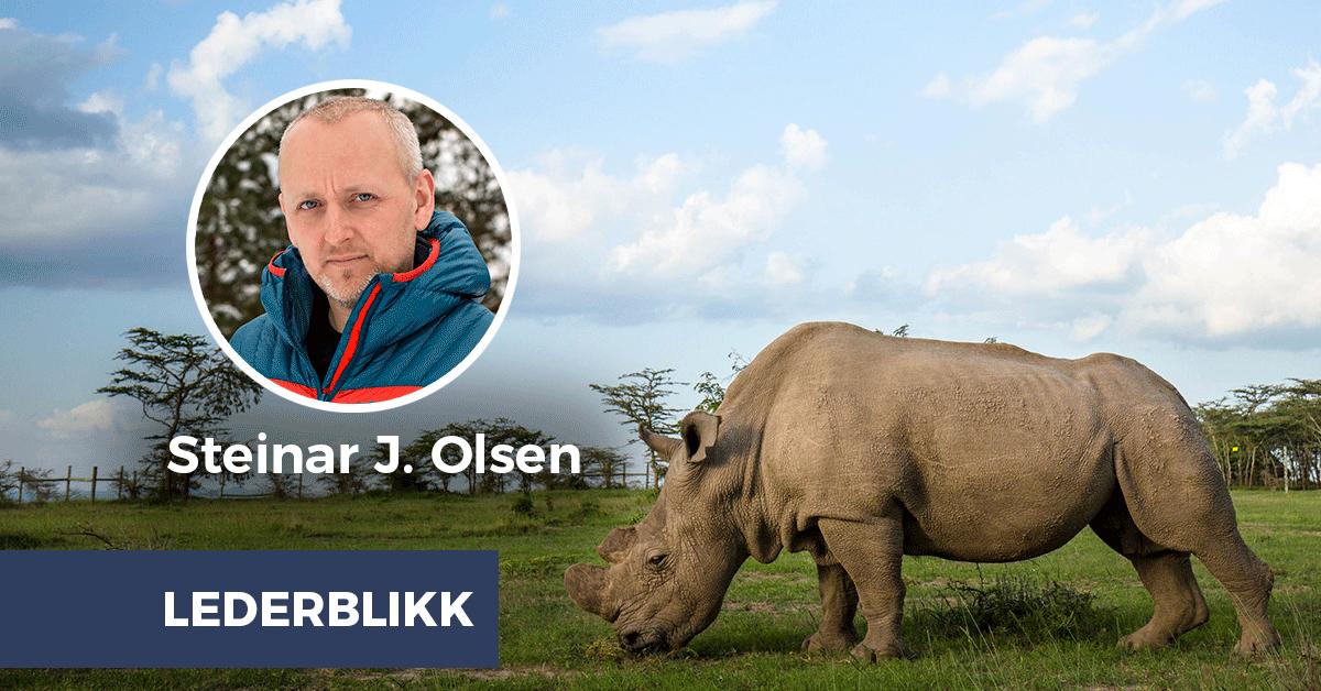 Steinar J. Olsen: Dette nesehornet bør engasjere en hel verden